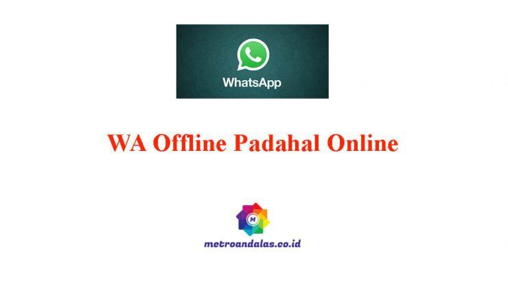 Cara Agar WA Terlihat Offline Padahal Online