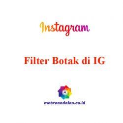 Filter Botak di IG