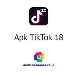 Apk TikTok 18