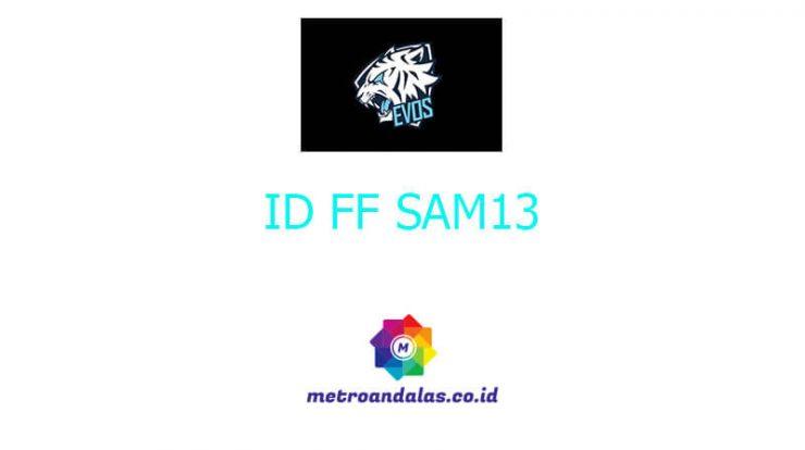 ID FF SAM13