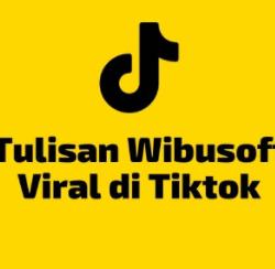 Wibusoft TikTok